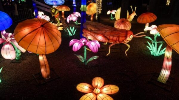 Kineski festival svetla 1